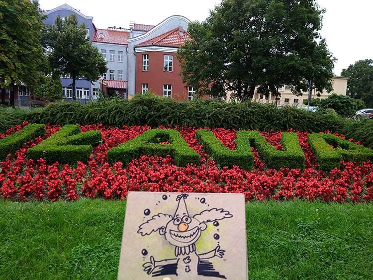 karykaturzysta Iława karykatury