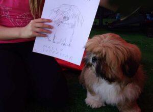 karykatury zwierząt karykatura psa kota karykaturzysta